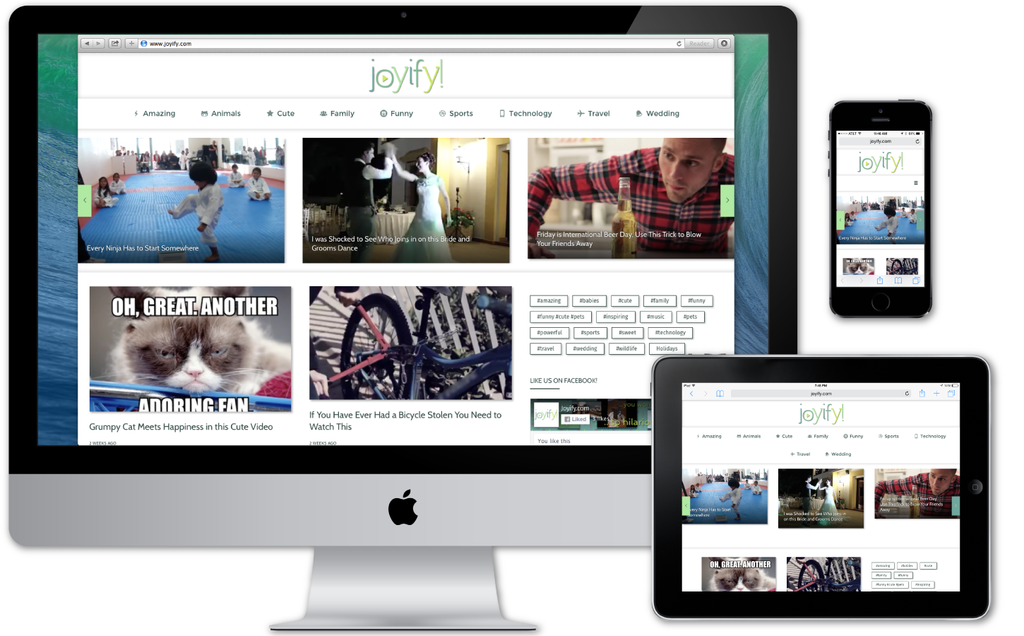 For this project, the client wanted a clean, responsive WordPress site built for displaying embedded video content across all platforms.